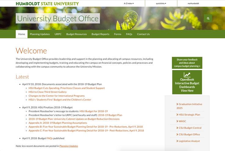 Budget website screenshot