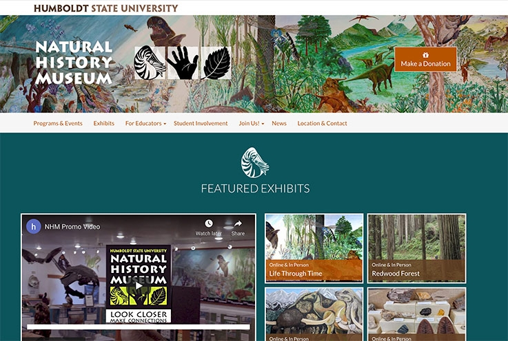 homepage of the Natural History Museum website